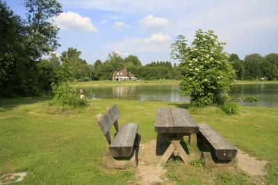 Das Gebiet um den Weitmannsee ist zu einer großflächigen Erholungslandschaft mit bedeutendem Freizeitwert geworden.