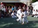 Asiatischer Kampfsport