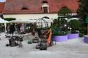 Lebensraum Garten, Bild 9