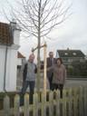 Freude über den neuen Baum