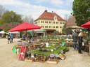 Viele verschiende Kräuter für den Garten wurden ausgestellt